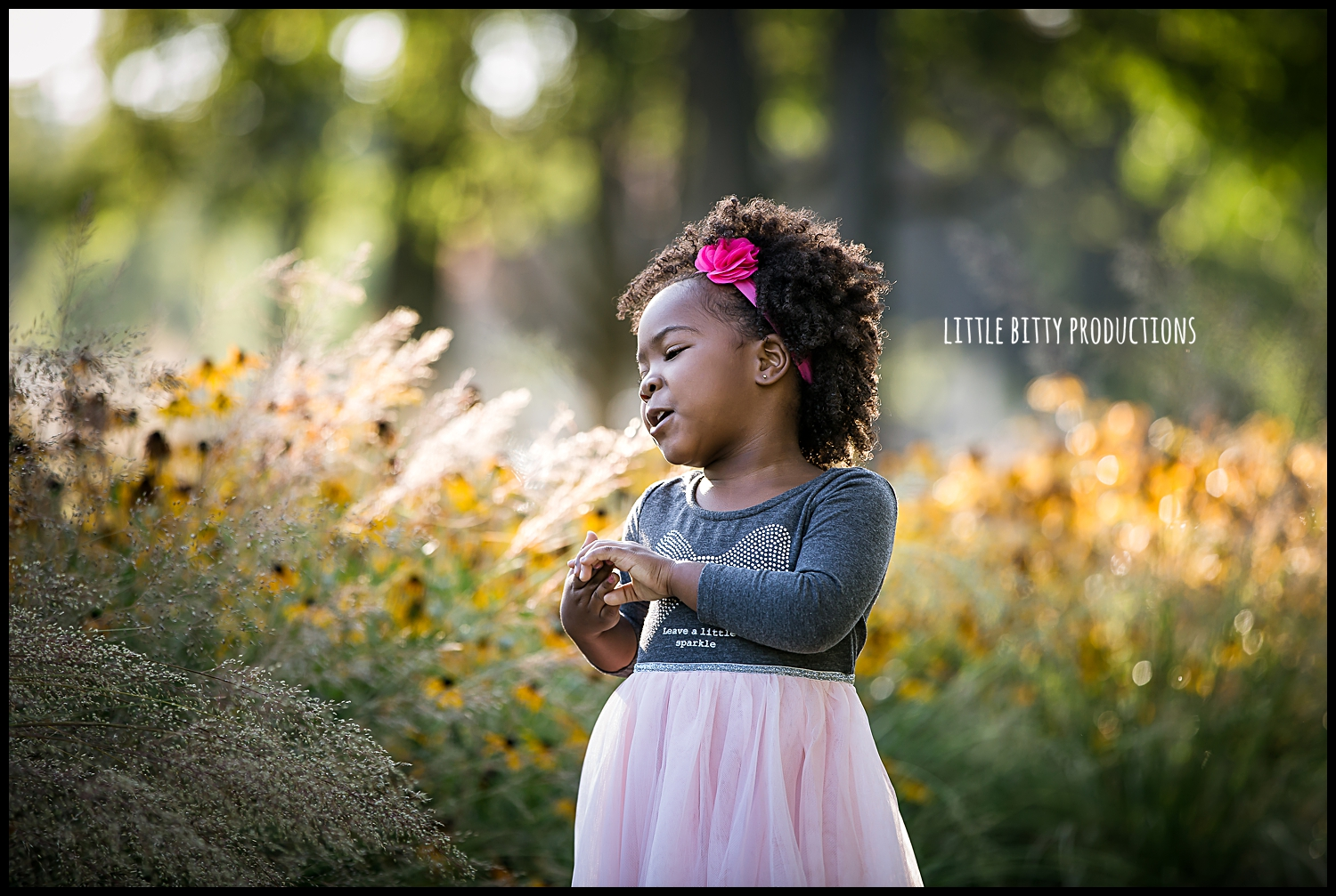 chicago children's photographer