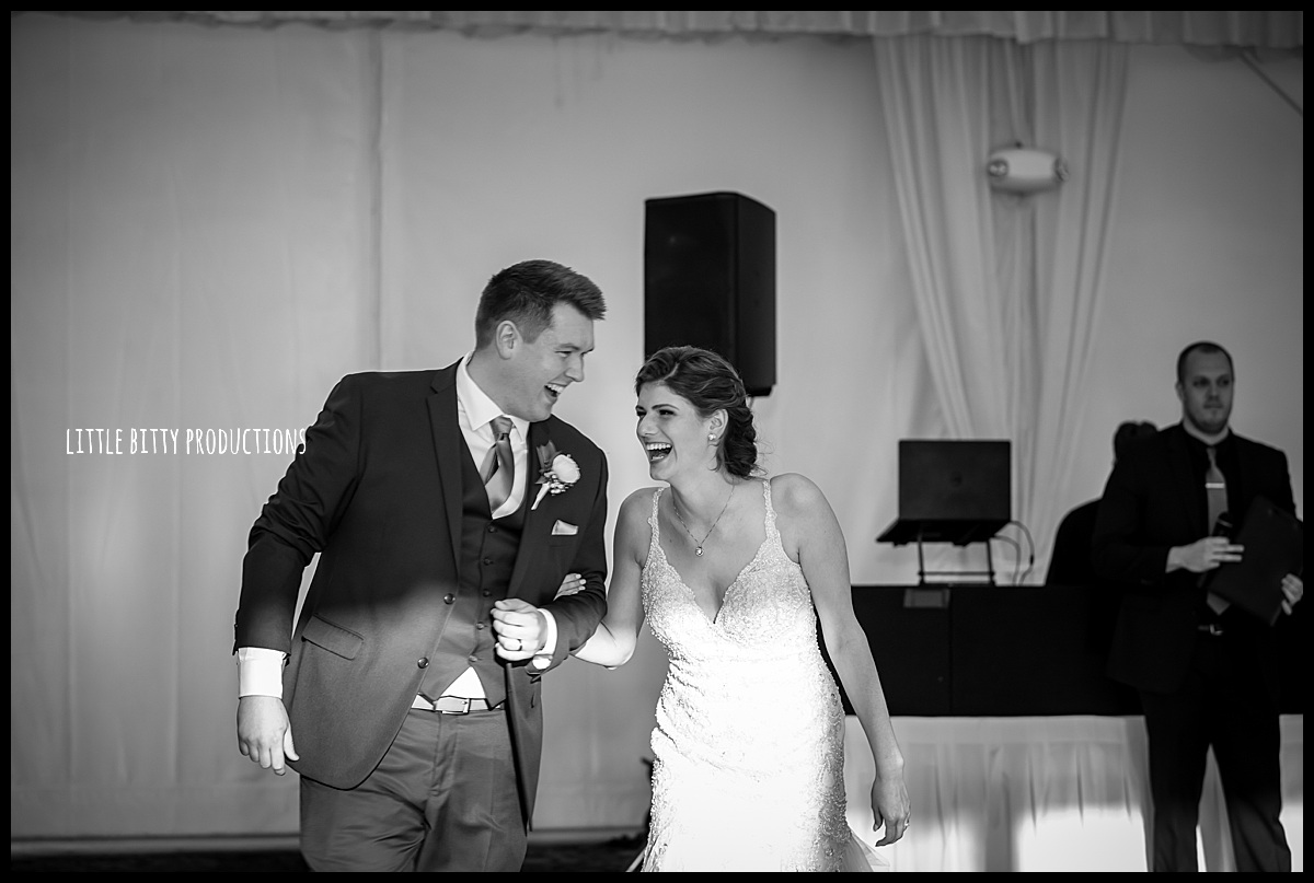 weddingphotographeroakpark_0460.jpg