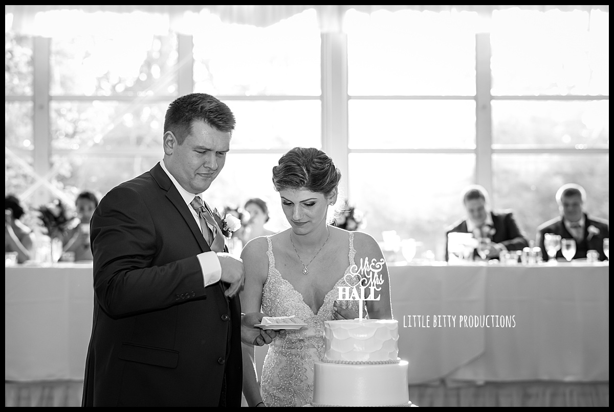 weddingphotographeroakpark_0483.jpg