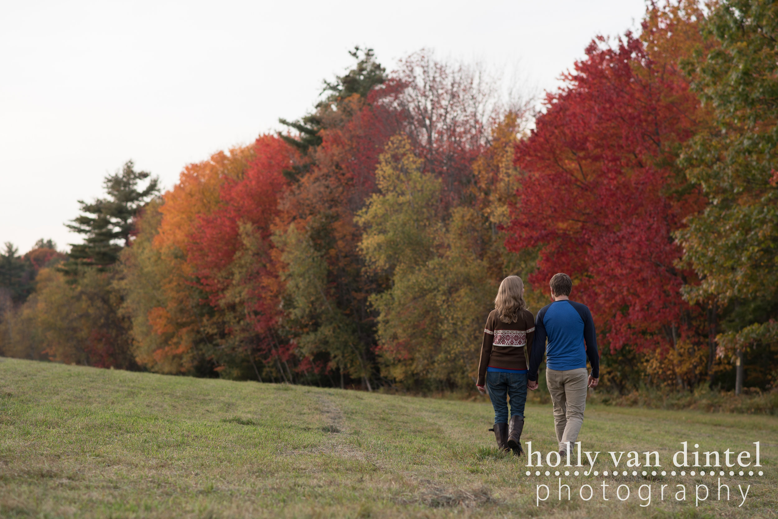 Engaged couple walking in field holding hands, fall foliage