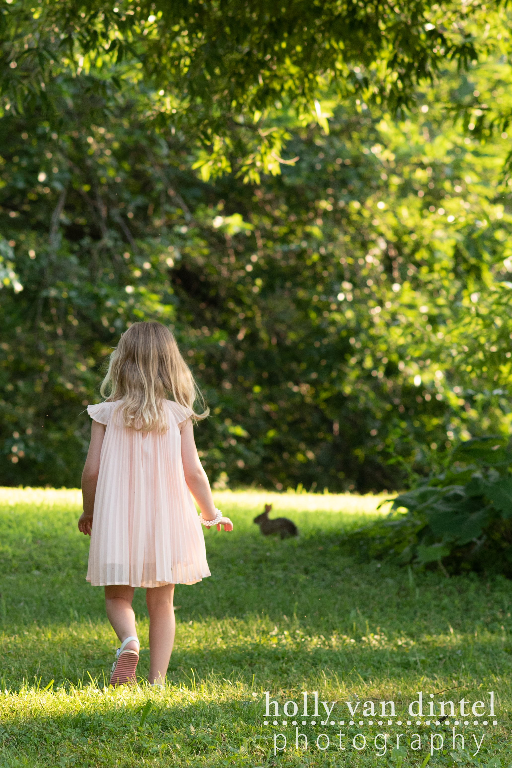 Little girl walking towards a small rabbit sitting in the grass.