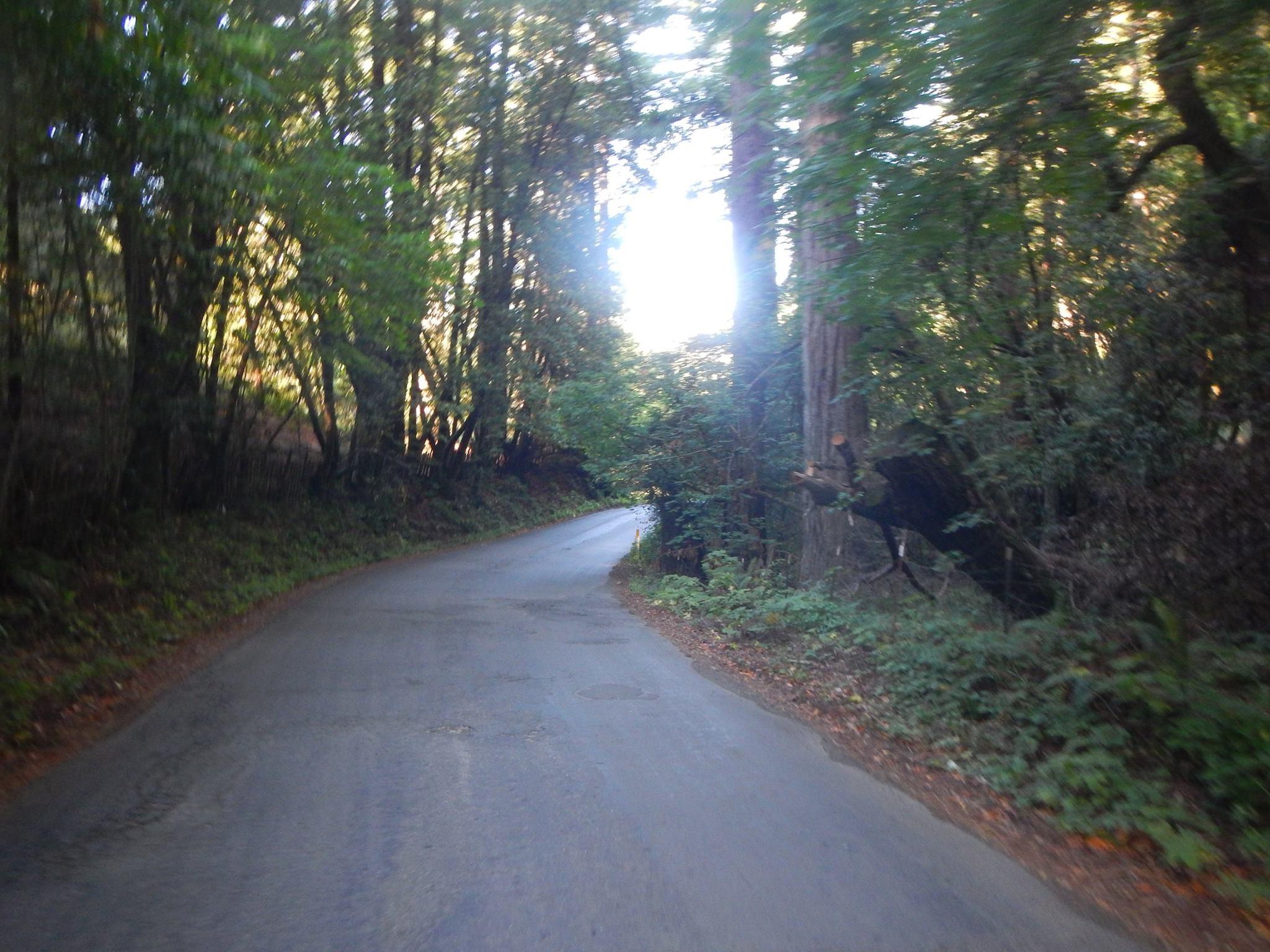 Exploring roads in California.