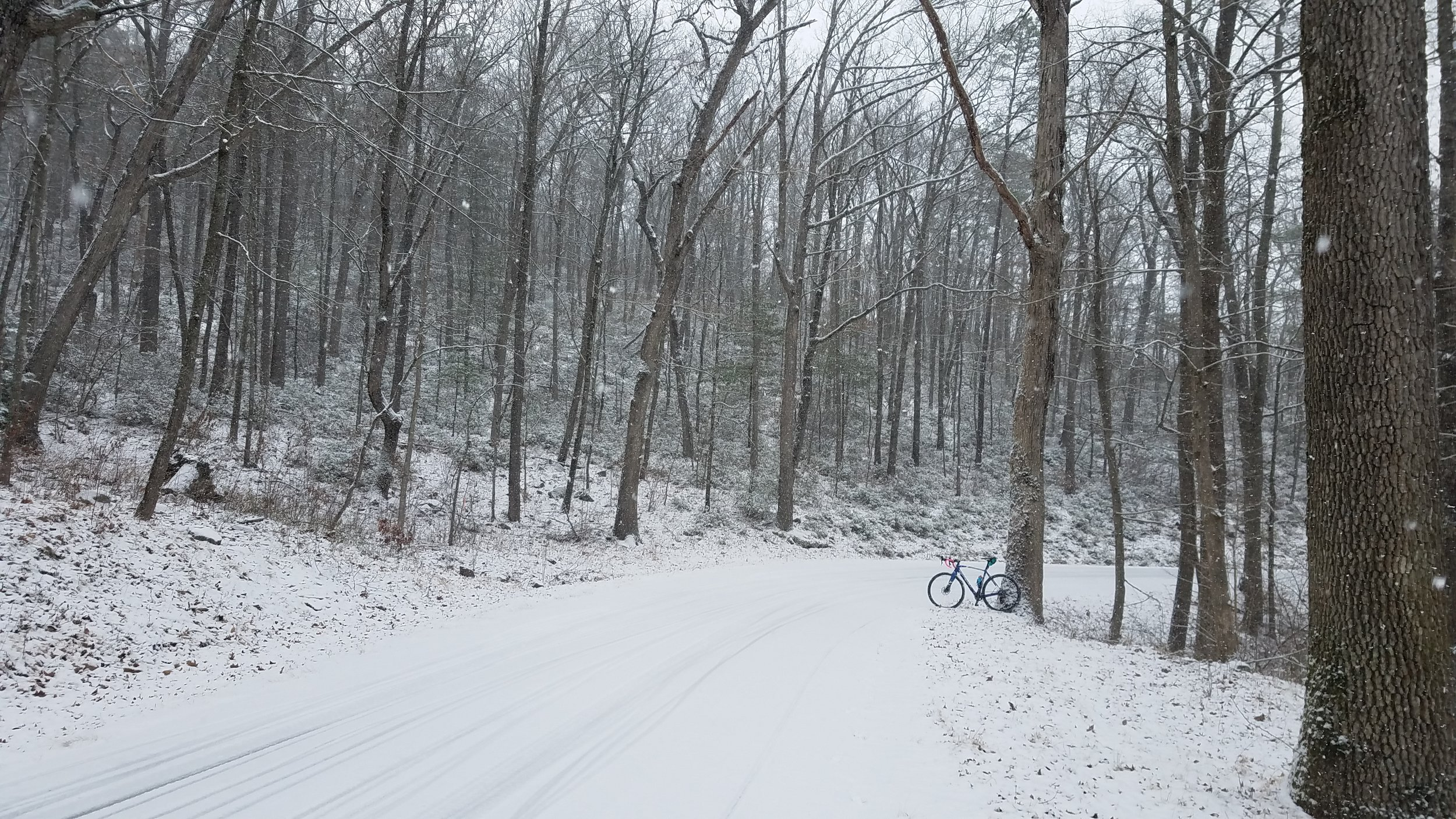 The ride back down the rode was magical. Just me & my bike, the snow, the woods, and the birds :)