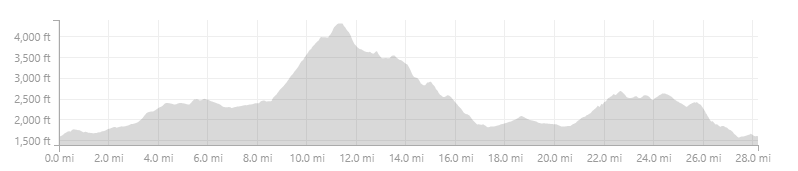 CampTodd Chestnut hankey elevation.png