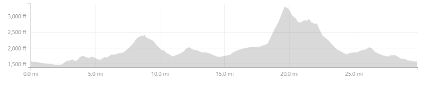Beginning of SM100 elevation.png