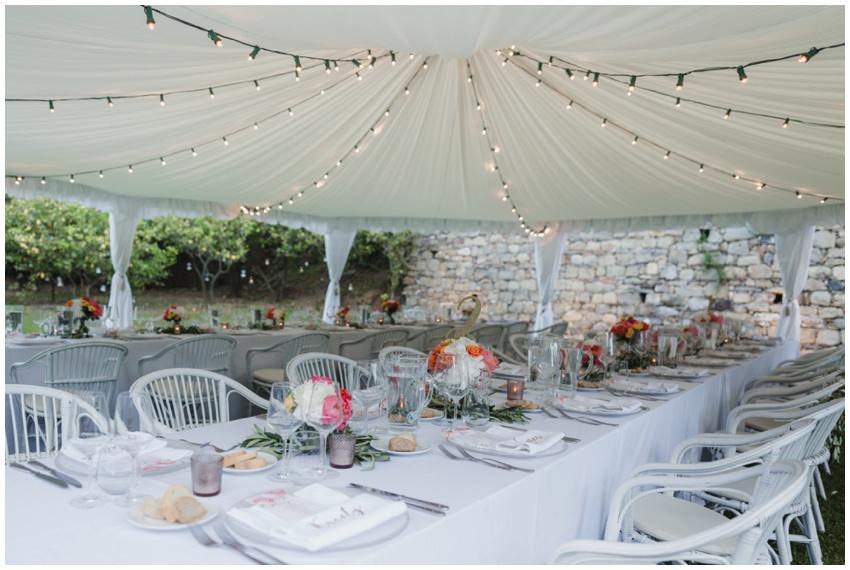 3-italian-vineyard-wedding-photographer-urban-row-photo_0016.jpg