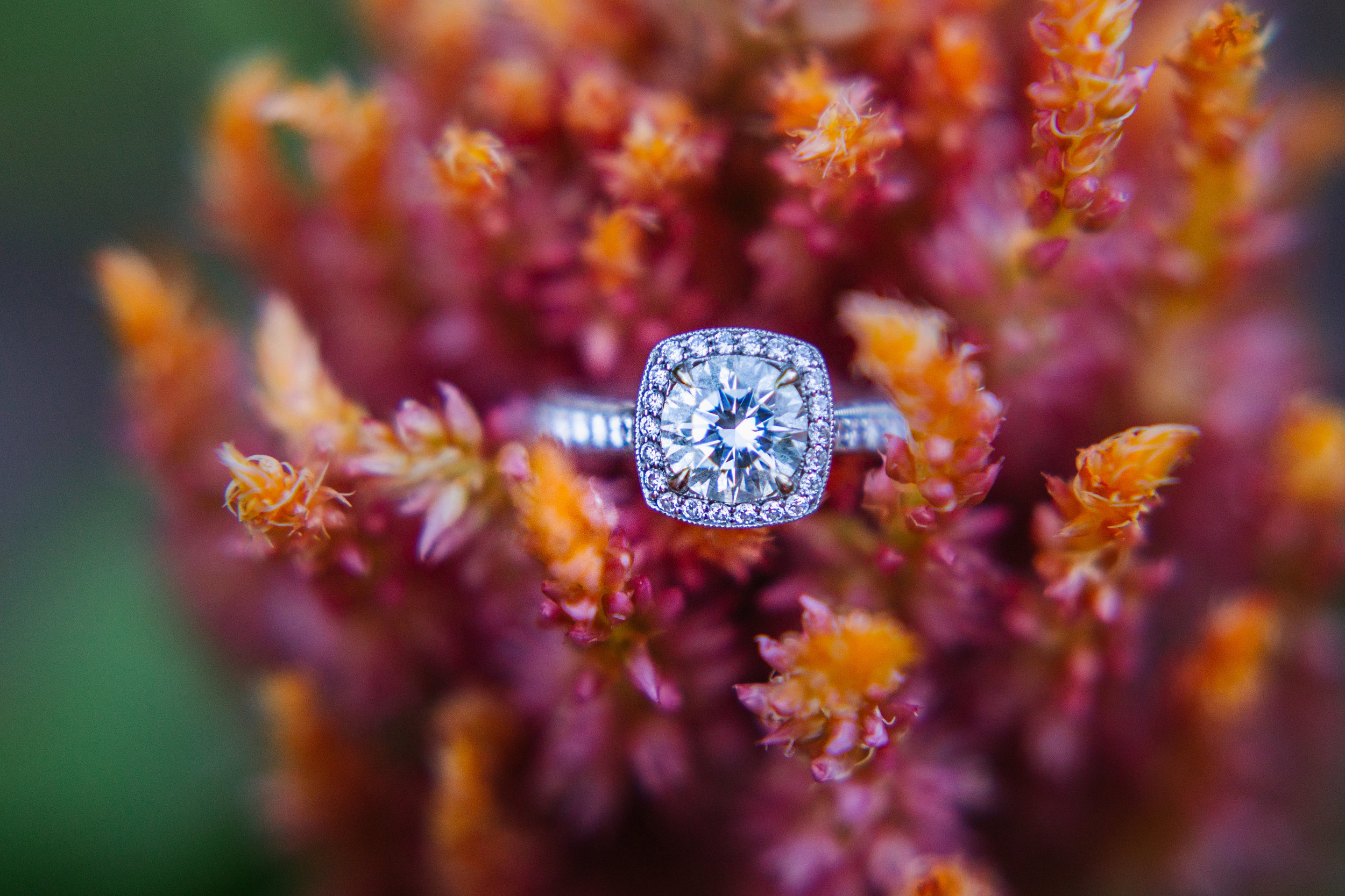 baltimore-engagement-solitaire-ring.jpg
