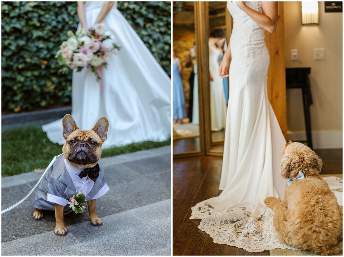 urban-row-photography-rosewood-farms-wedding-dog-bowtie_0019.jpg