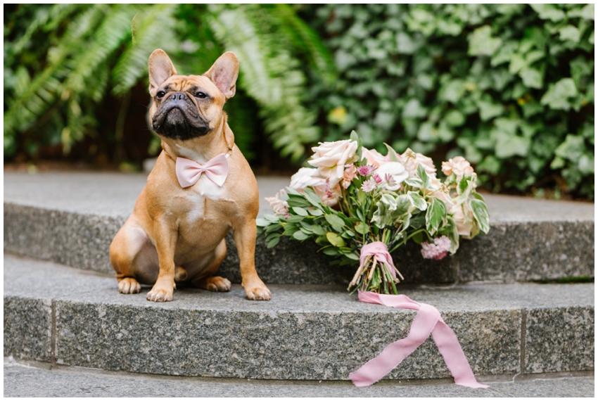 urban-row-photo-wedding-dog-bowtie_0026.jpg