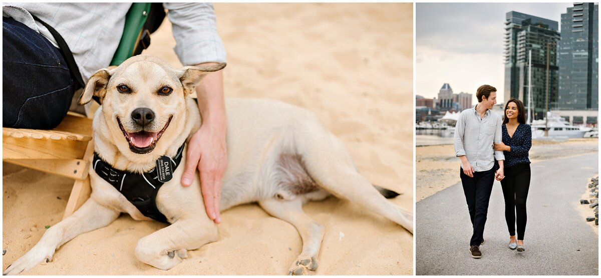urban-row-photo-including-your-dog-in-engagement-photos_0019.jpg