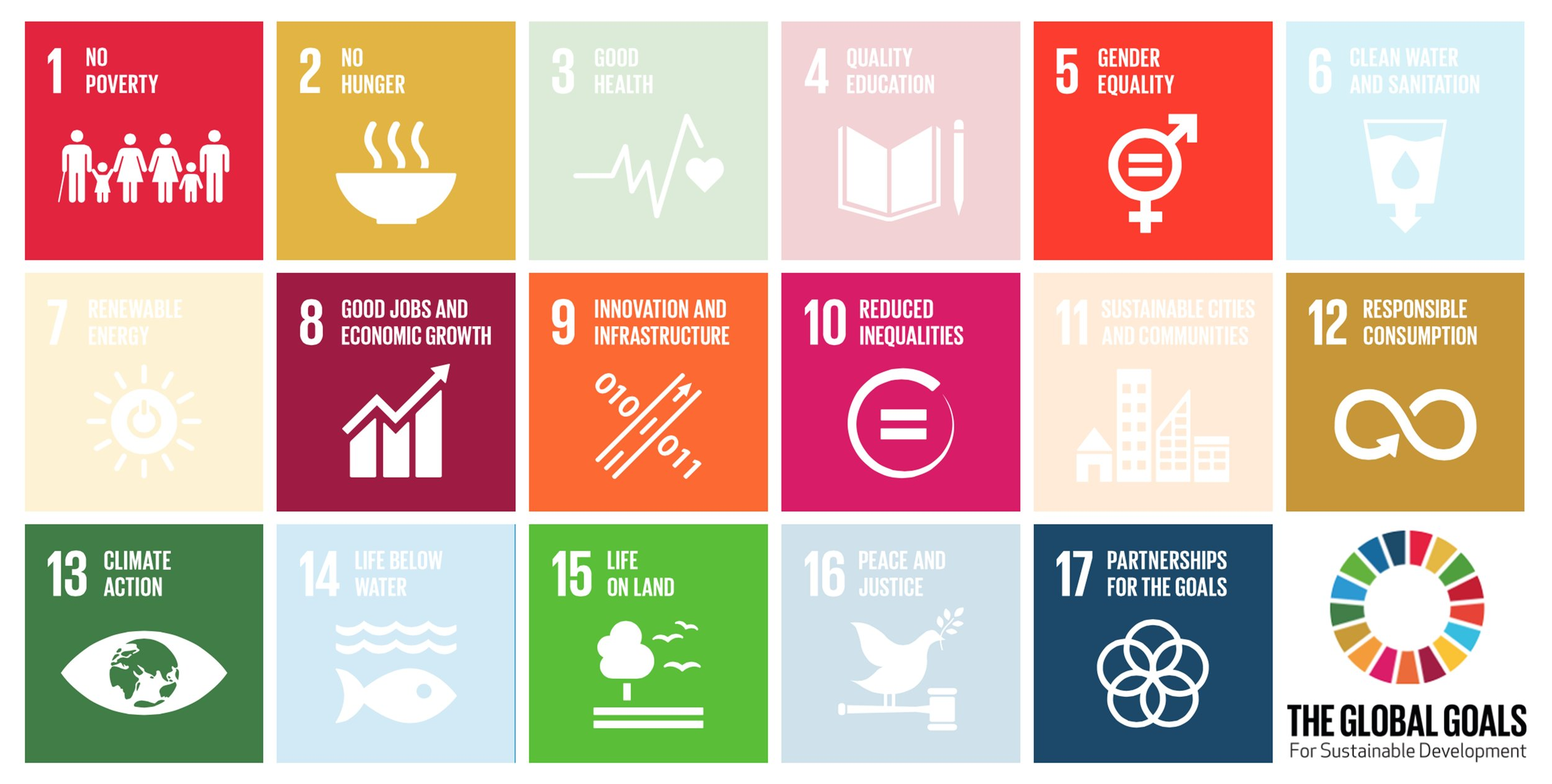 Cheetah's work contributes to 10 of the 17 UN Sustainable Development Goals