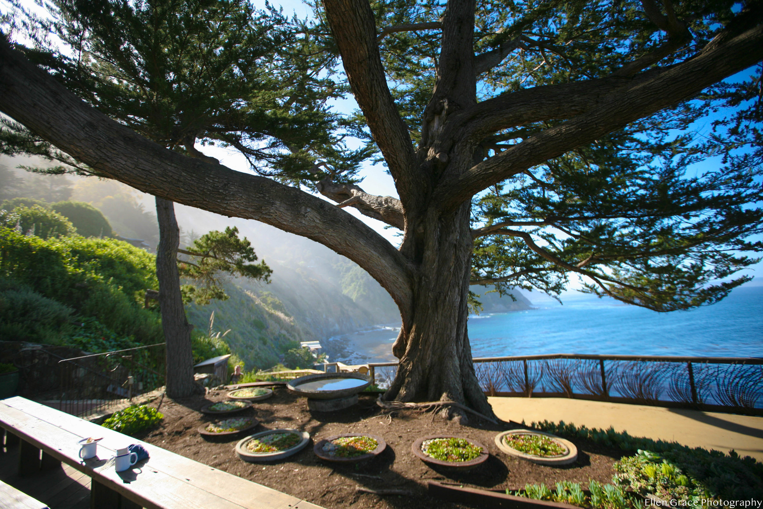 Esalen-2018-Highlights-34-1.jpg