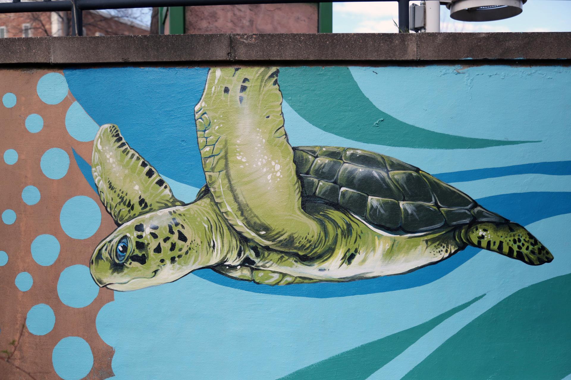Patrick Maxcy Mural Boulder