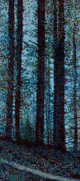 "Redwood Forest, Oil on Linen, 33"" x 72"", 2012"