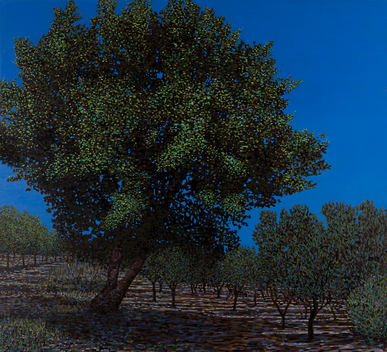 "Olive Grove II, Oil on Linen, 40"" x 42"", 2015 (SOLD)"
