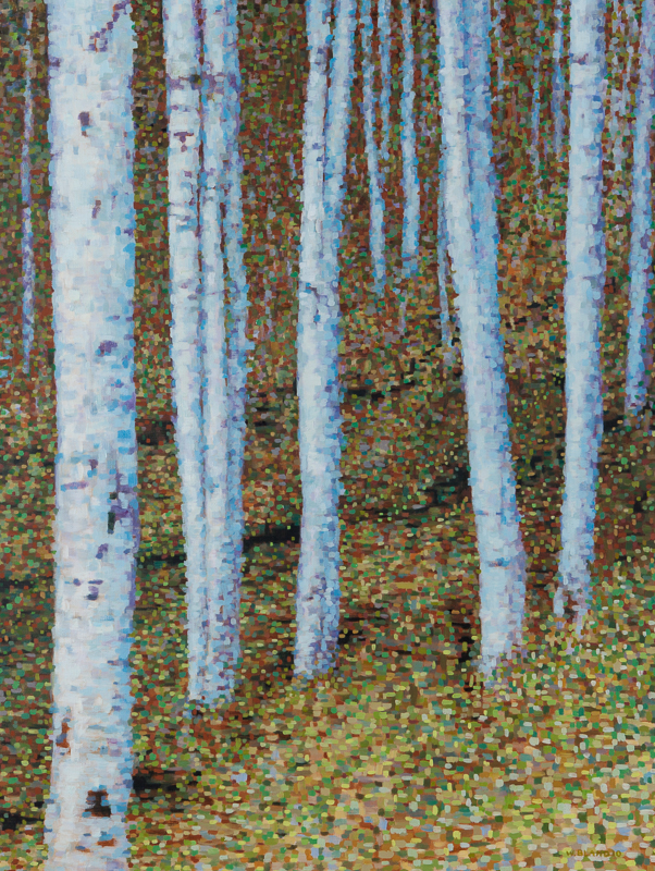 "Birch Trees VII: Energy, Oil on Linen, 34"" by 42"", 2011"