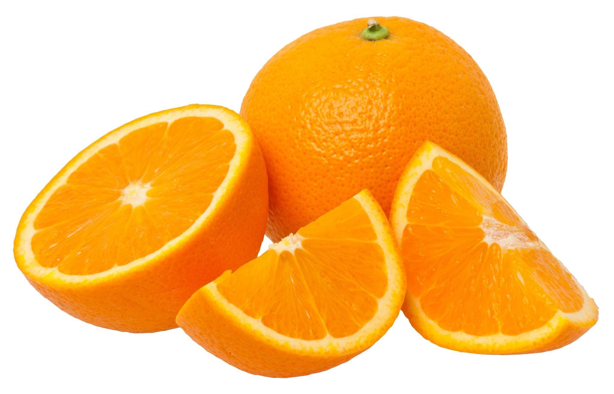 "Charles Darwin's ""On the Oranges of Species"""