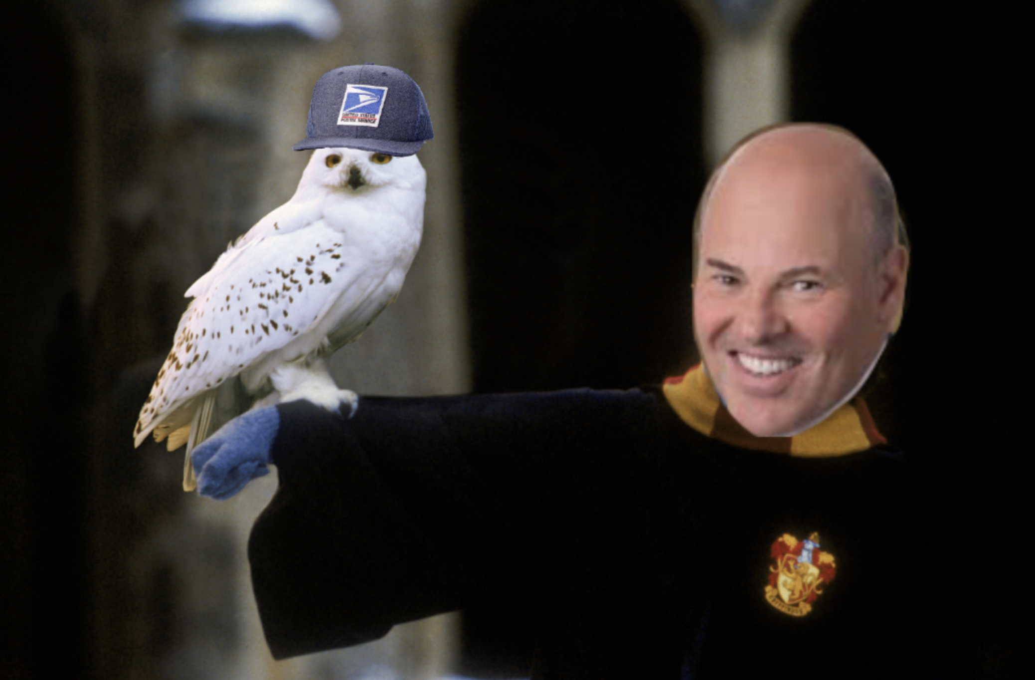 At USPS Congressional Hearing, Postmaster Commits to Fire Hedwig, Hires Pigwidgeon