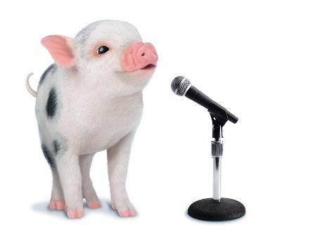 Pig-Singing_m-eps.jpg