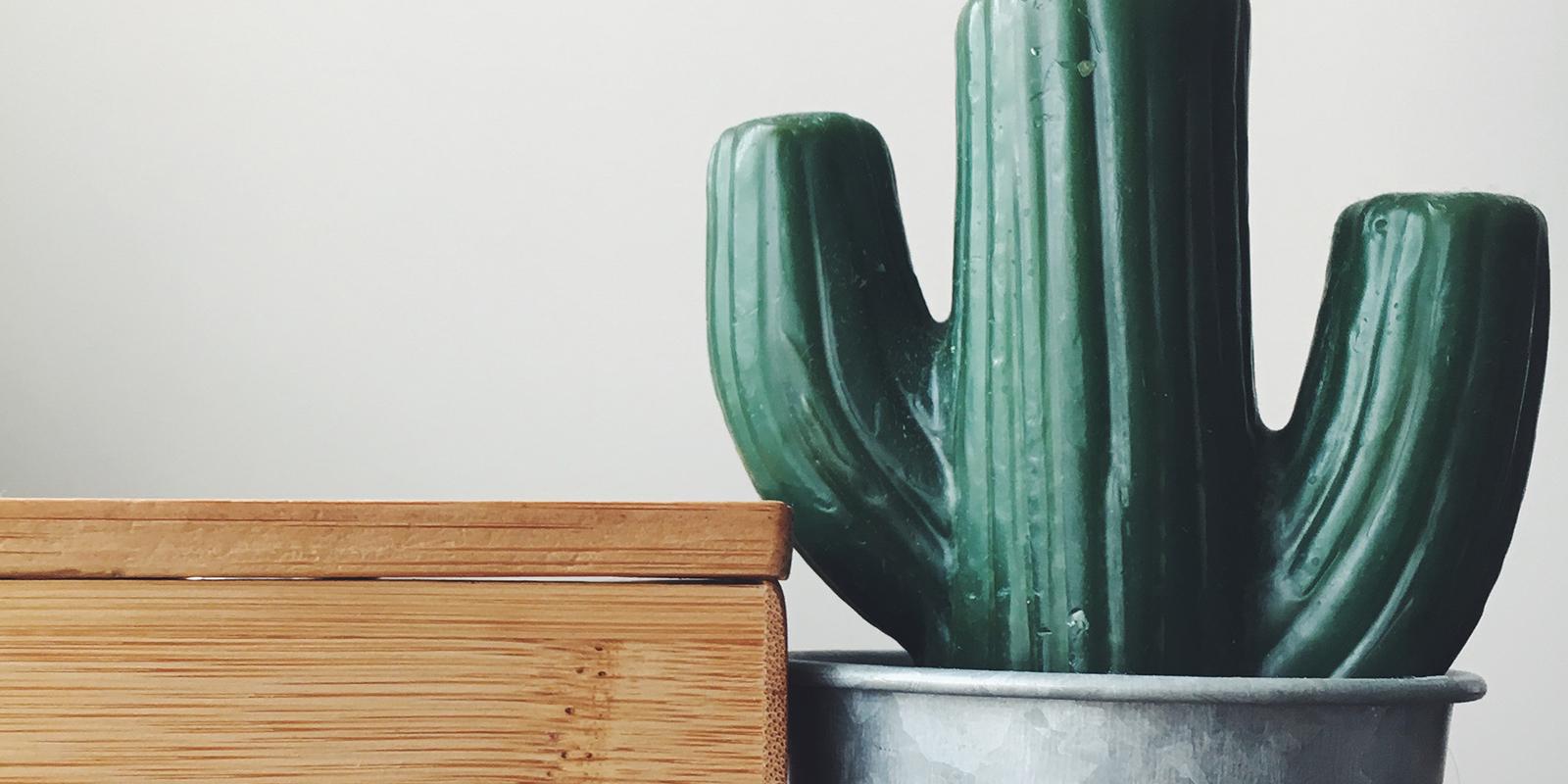 CactusMotion-Cover.jpg