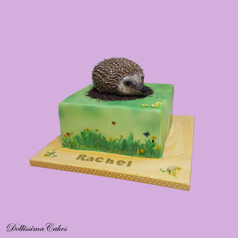 Hedgehog Celebration Cake