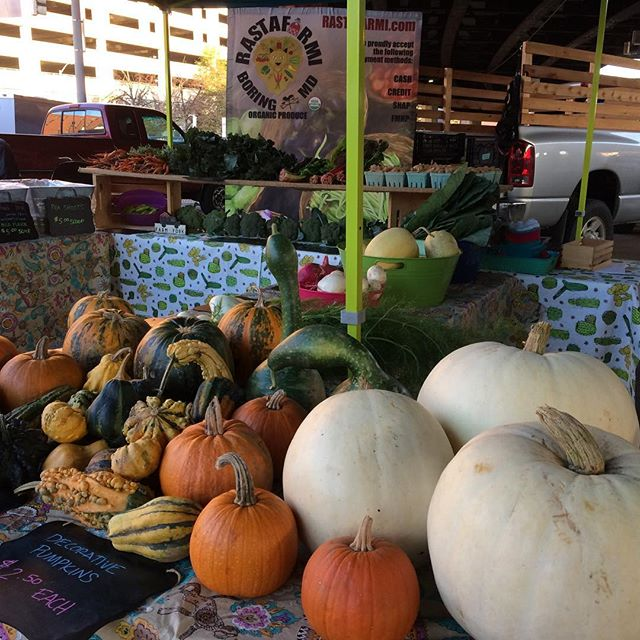 Come see us at the JFX farmers market! So many beautiful things fall! Love this time of year. We are the only certified organic farm at the market! #jfxfarmersmarket #organic #produce #fall #farmersmarket #whitepumpkins