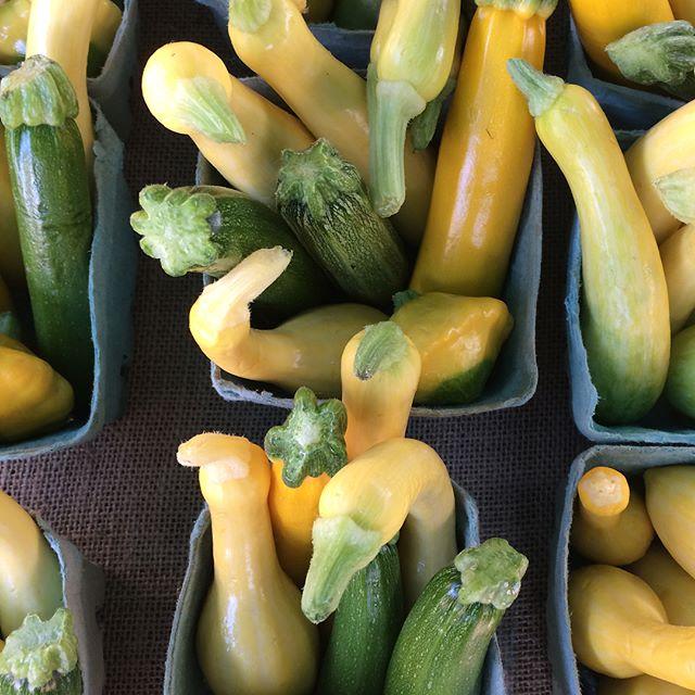 We are here! Come early to beat the heat! #jfxfarmersmarket #marylandfarmers #organic #freshproduce #seasonal #food