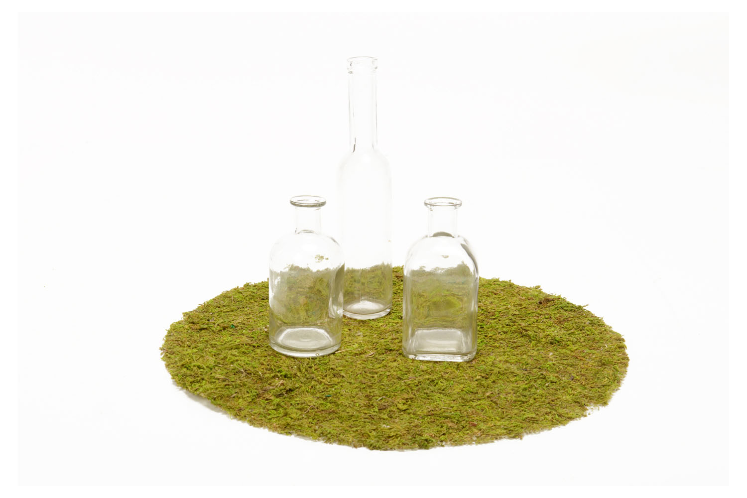 Preserved Moss Charger (16in dia) 1.50