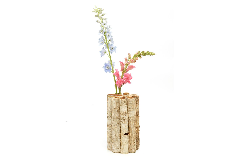 "Birch Test Tube Vase (8"" h) 4-"