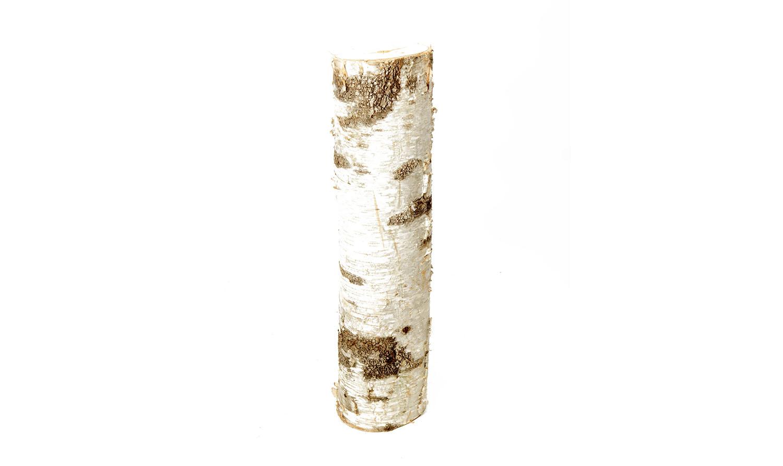 Birch Log (Various Sizes) 10-
