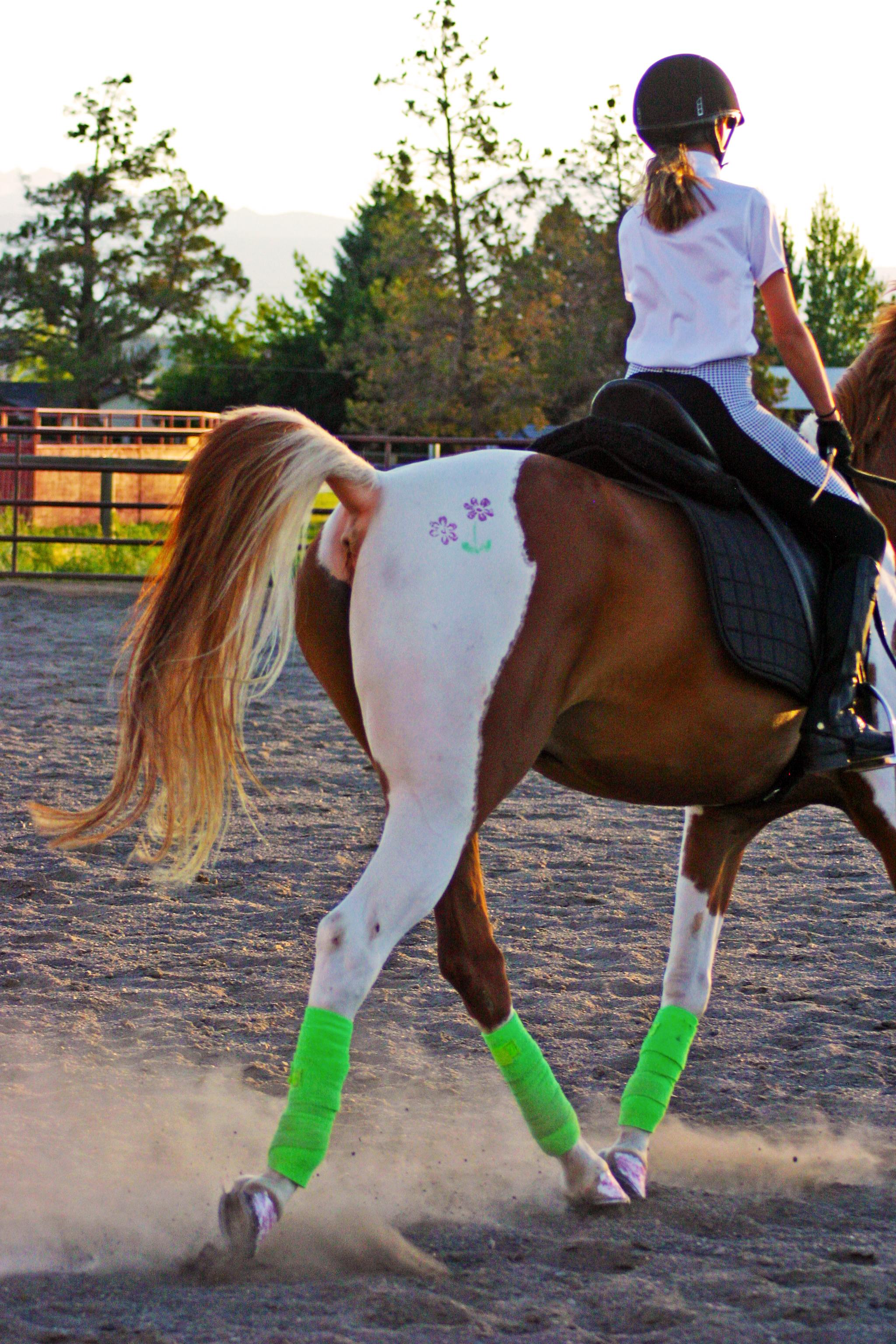 Lauren riding Charlie, her Arabian/Pinto