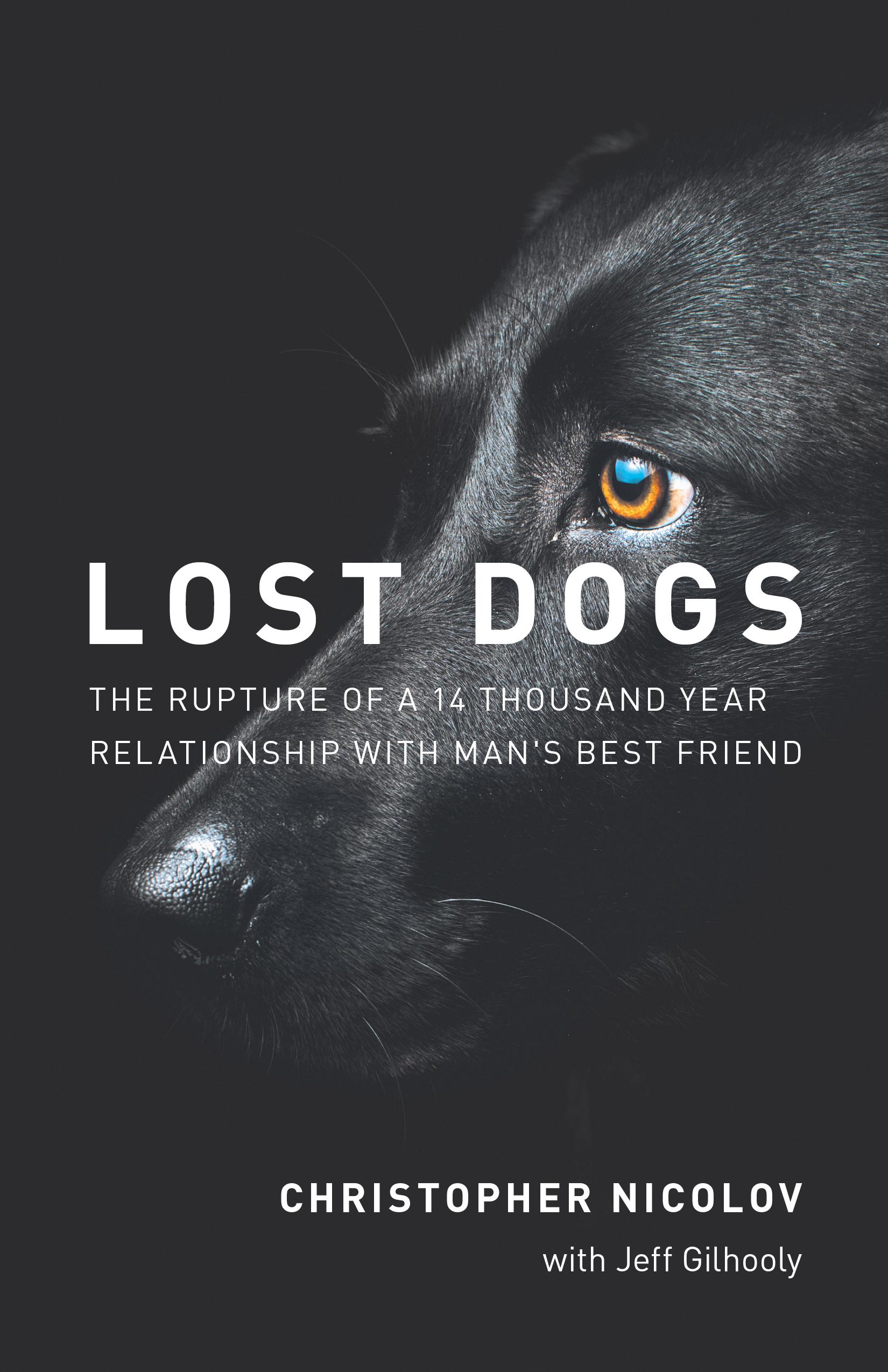 LostDogs_Cov