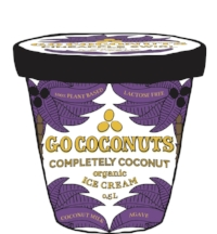 GO COCONUTS ILLUSTRATION BURK coconuts CS6.jpg