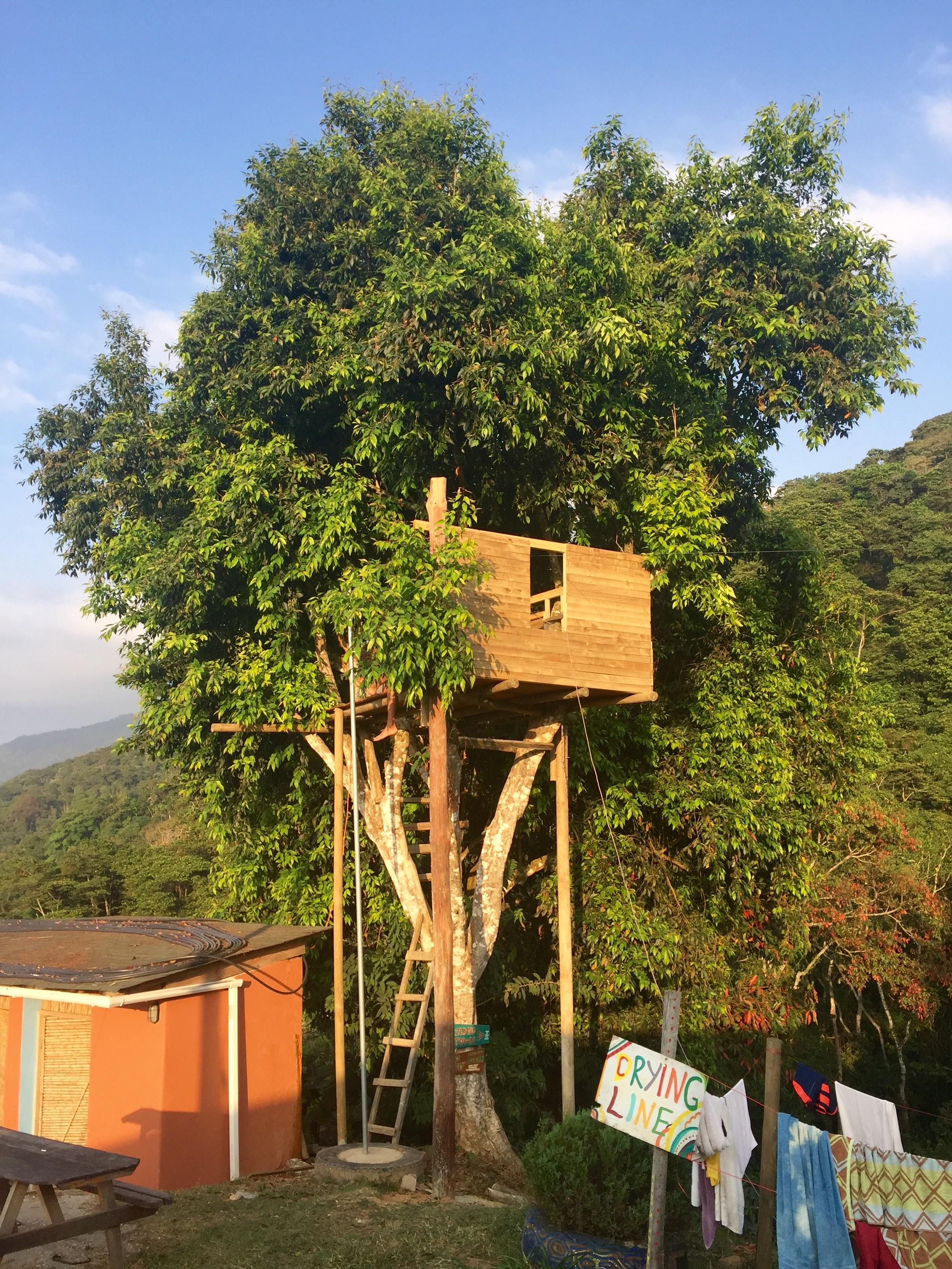 Tree house at Casa Elemento