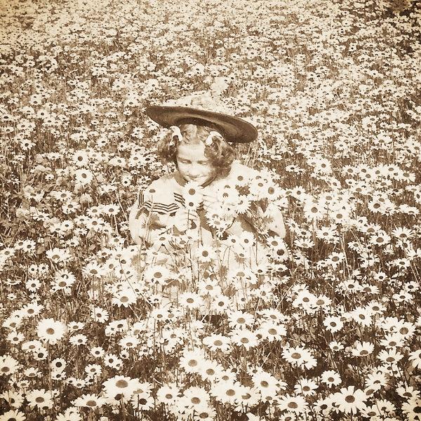 vintage_girl_in_daisy_meadow_by_hauntingvisionsstock.jpg