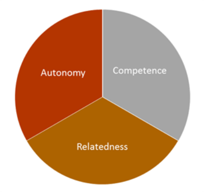 Self-determination theory: autonomy, competence and relatedness