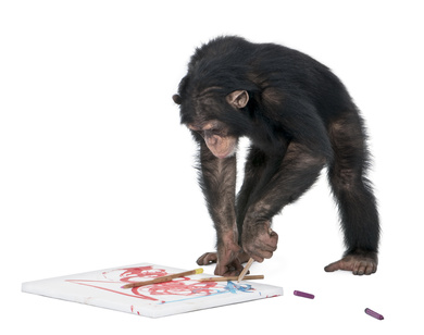 monkeylearning.jpg