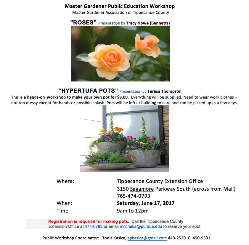 workshop-June17.jpg