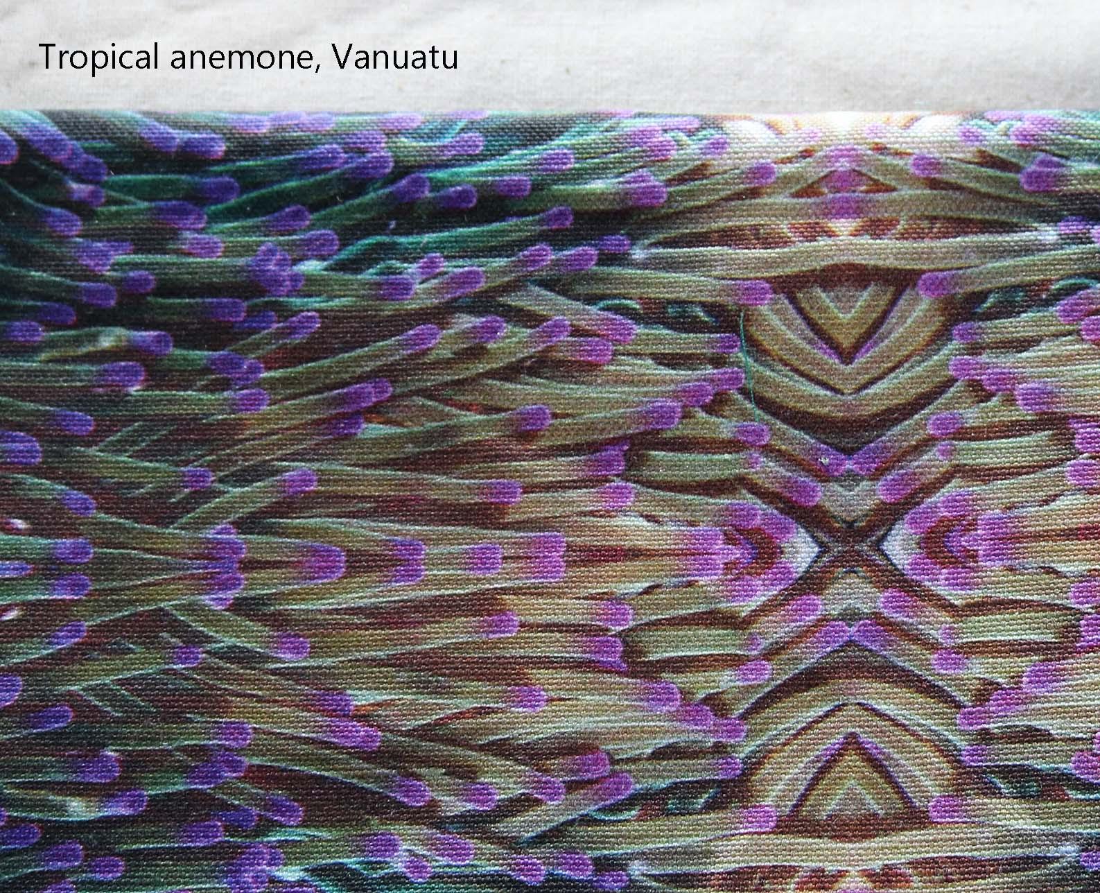 Fabric anemone van.jpg
