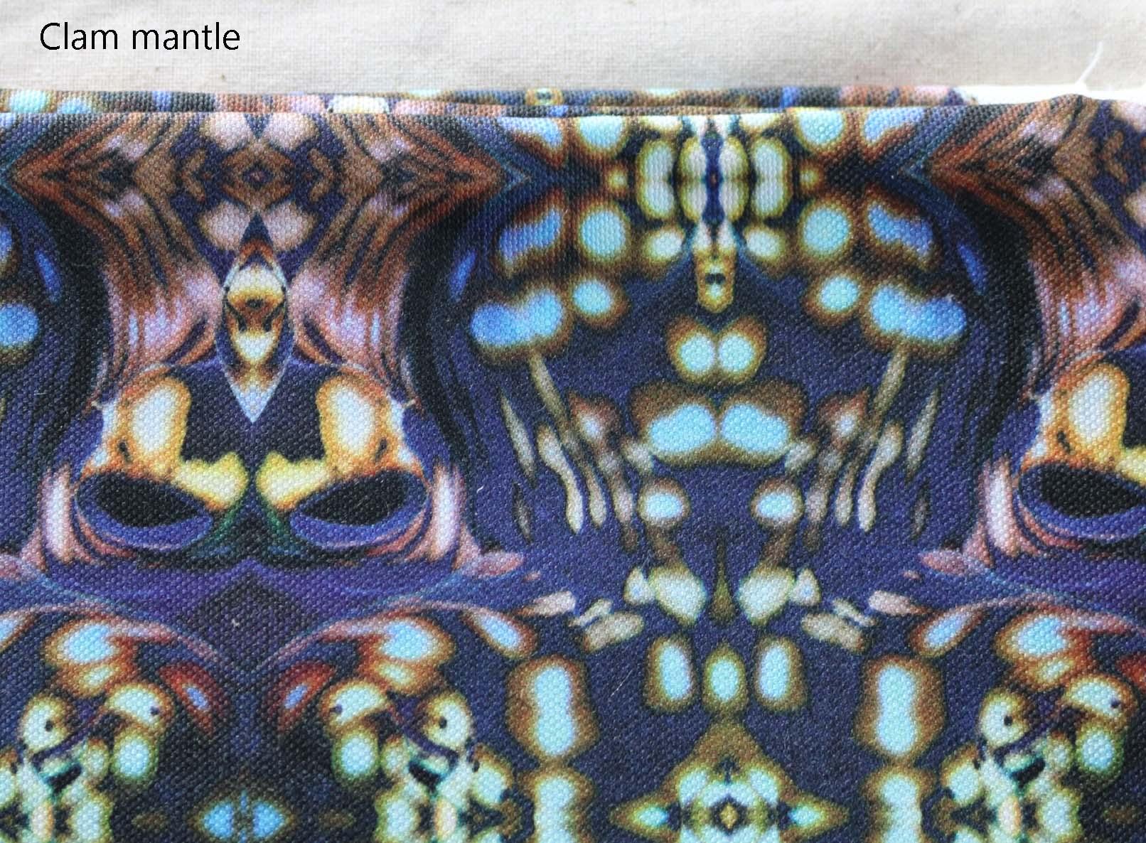 fabric clam.jpg