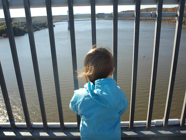 Toddler's view from the Walkway, 2013