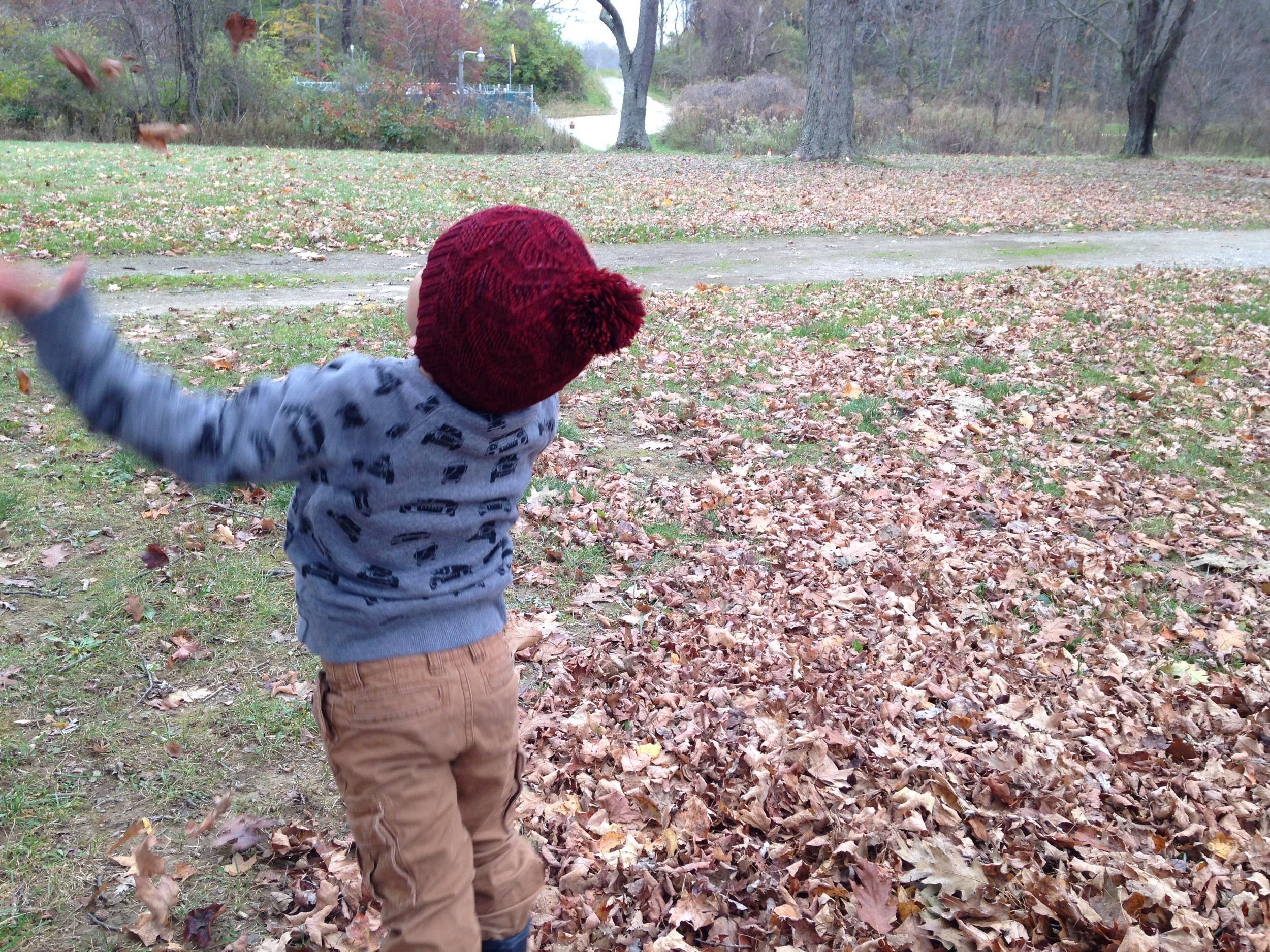 Crisp leaves = pure joy