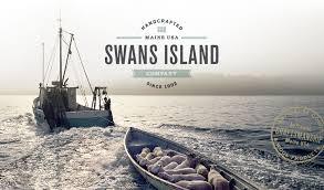 buy Swans Island yarn