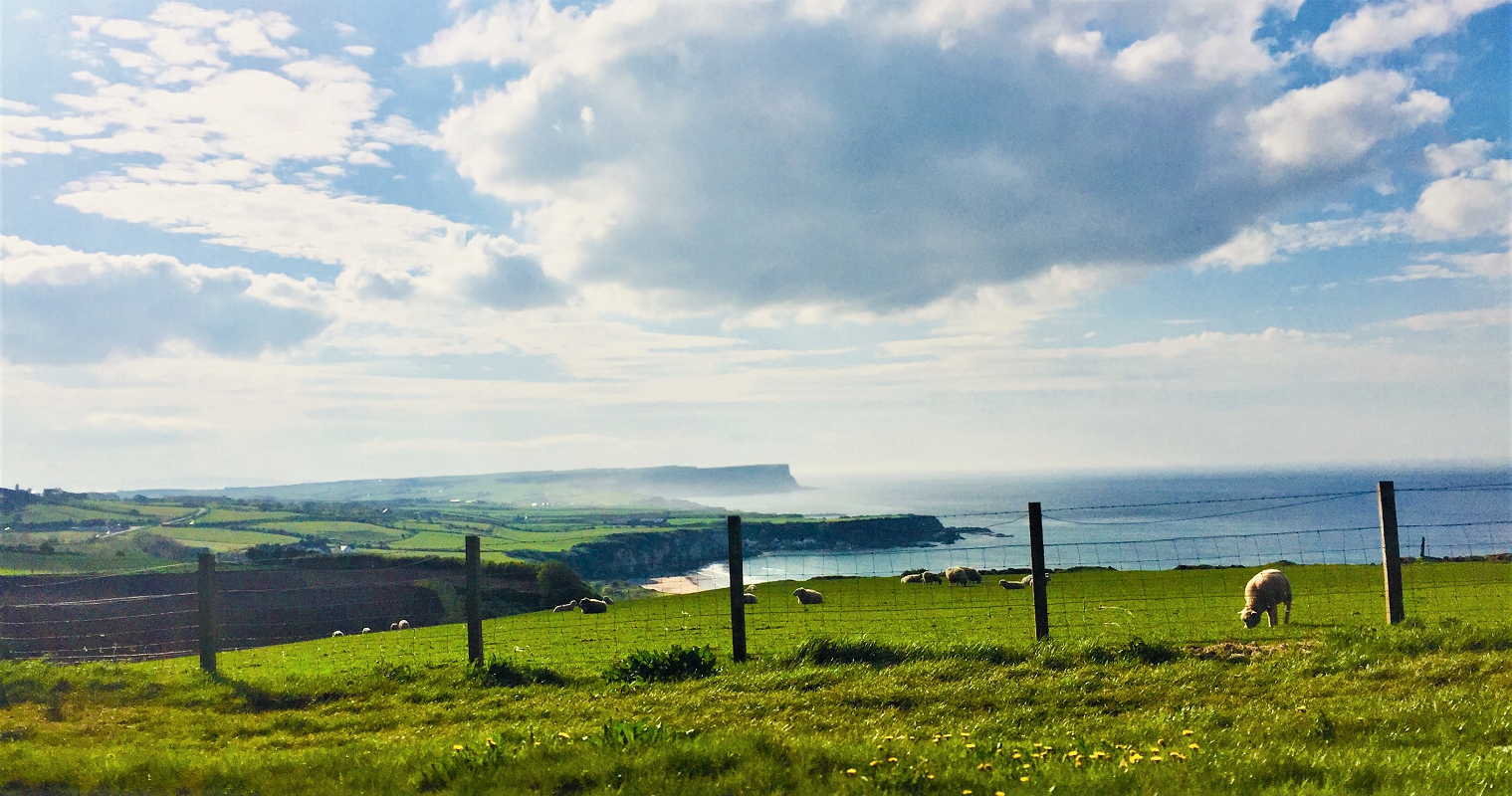 Ireland 10.png