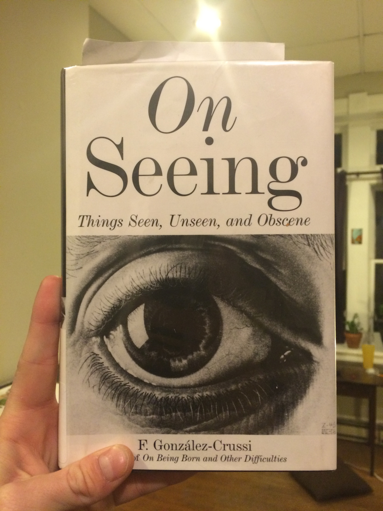 Fantastic book, really freaking fantastic essays on perception how we see and what we look at. Introduced me to the work of Cajal a neuro-biologist. There is also a line I the book that says there is nothing more powerful and transfixing than the gaze of your lover, really poetic.