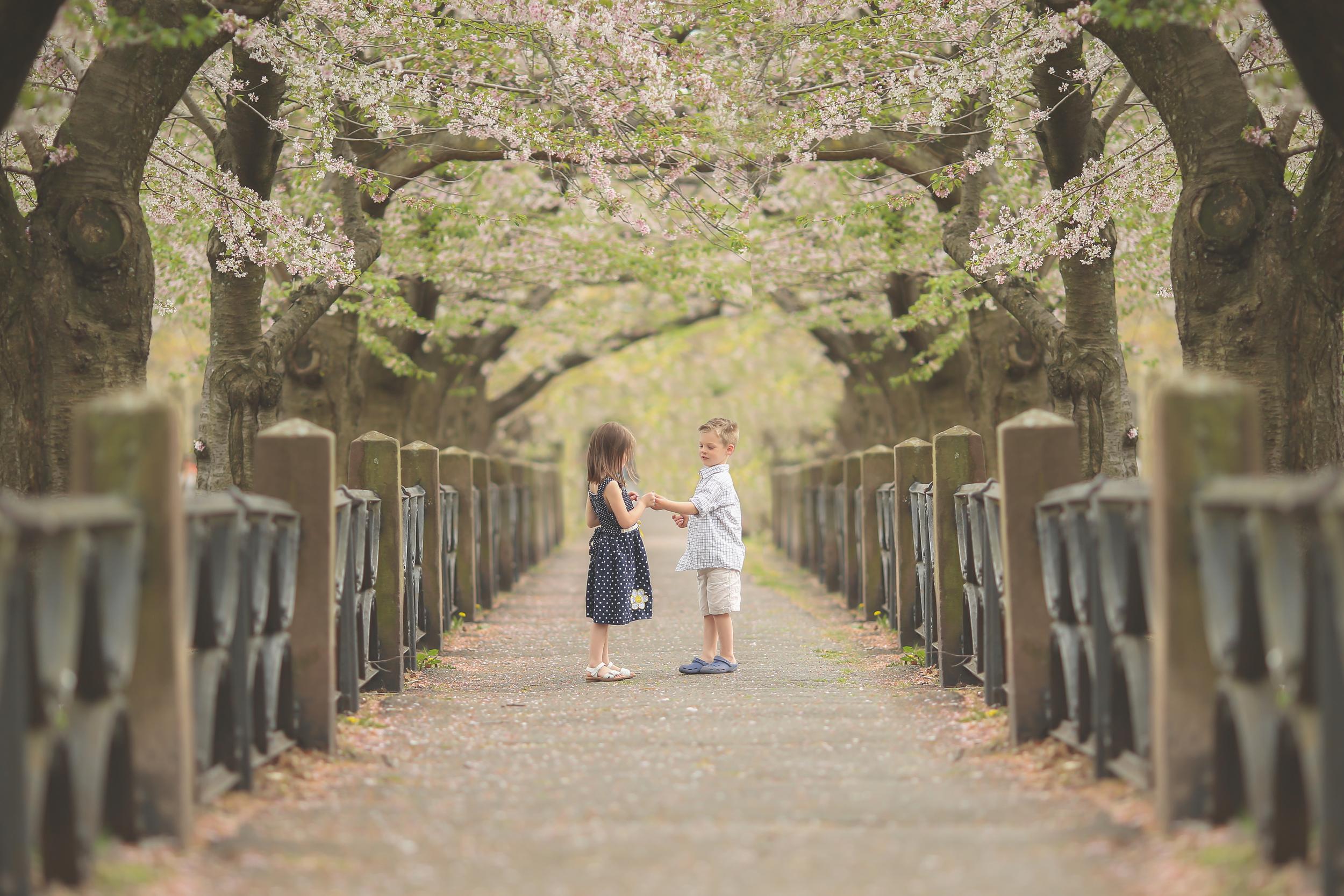 G&L Cherry Blossoms 2016-38.jpg
