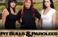 pit-bulls-and-parolees-2c.jpg