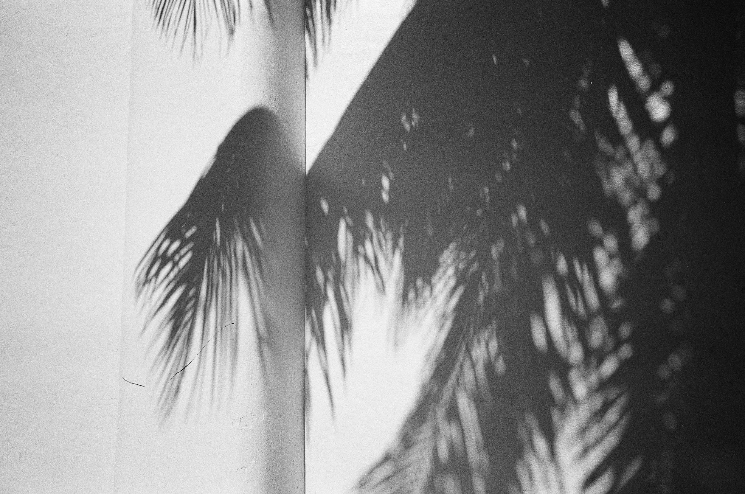 Untitled-32.jpg