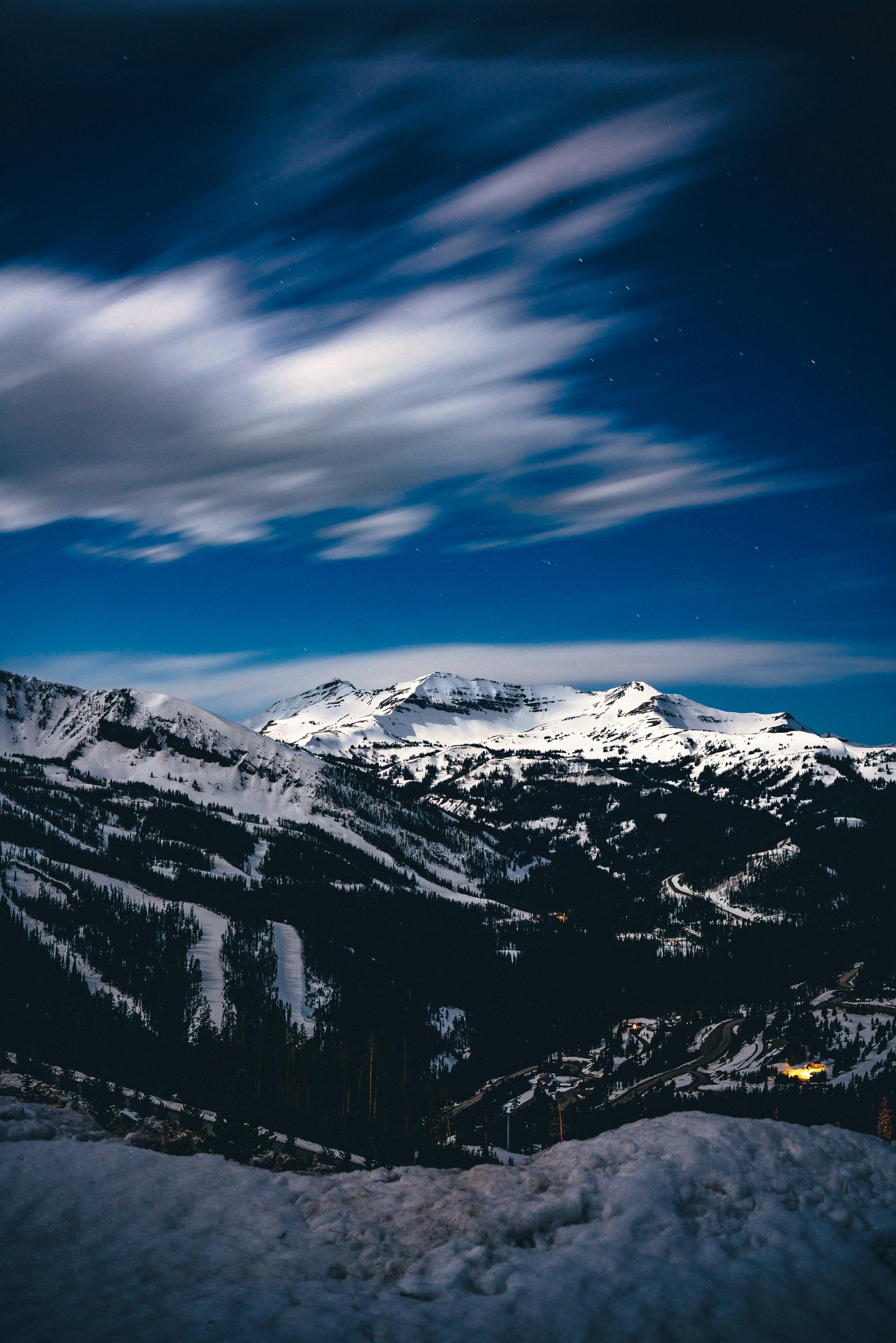 landscapevert.jpg