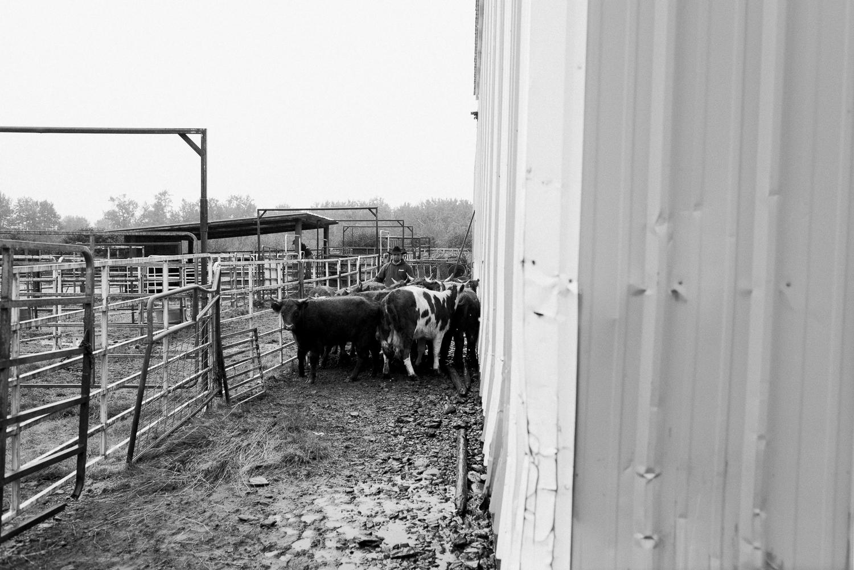 rodeo-family-in-alaska_24.jpg